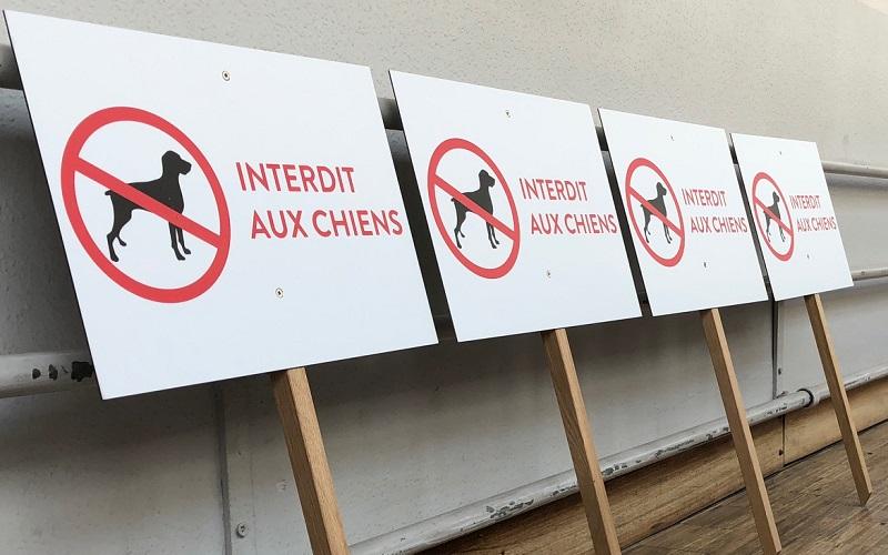 panneau, dibond, interdit aux chiens