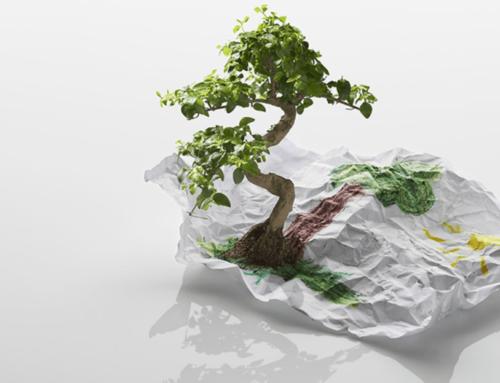Green Printing : Atelier Images et Cie s'engage dans l'impression numérique et la signalétique ecoresponsable