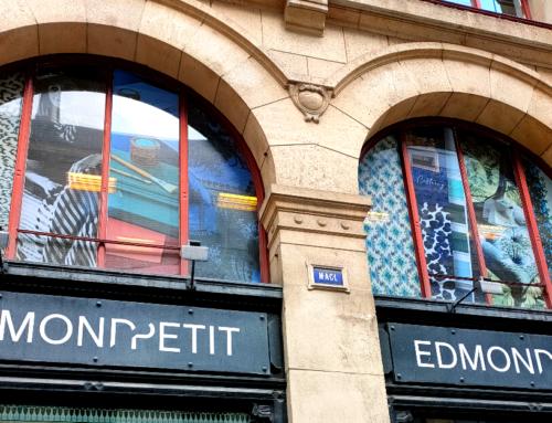 Décoration vinyle microperforé Edmond Petit x Codimat Collection x Mériguet Carrère Paris